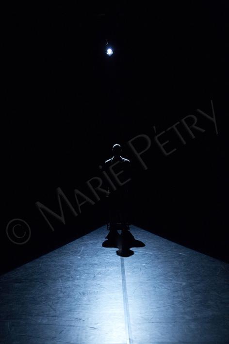 v01©mariepetry